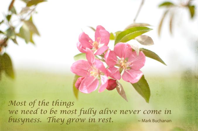 Flower_rest